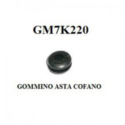 GOMMINO ASTA COFANO
